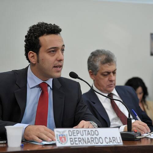 Bernardo Ribas Carli