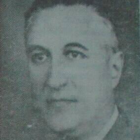 Costin Nenițescu