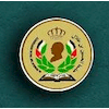 Al-Hussein Bin Talal University logo