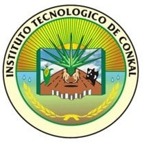 Conkal Institute of Technology logo