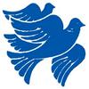 Cyprus School of Molecular Medicine logo