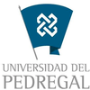 Del Pedregal University logo