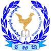 Economics and Finance Institute logo