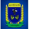 Hinthada University logo