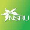 Nakhon Sawan Rajabhat University logo