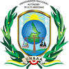 National Autonomous University of Alto Amazonas logo