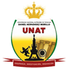 National Autonomous University of Tayacaja logo