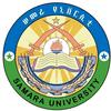 Semera University logo