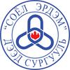 Soyol-Erdem College logo