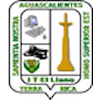 Technological Institute of Llano Aguascalientes logo