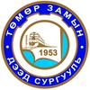 Transportation Institute logo