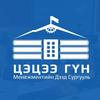 Tsetsee Goun Institute of Management logo