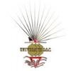 University G.O.C. logo
