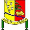 University of Mbuji-Mayi logo