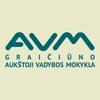 V. A. Graiciunas School of Management logo