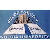 Woldia University logo